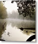 Fog And Light Metal Print