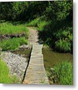 Footbridge Over A Creek Metal Print