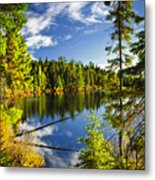 Forest And Sky Reflecting In Lake Metal Print