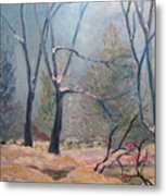 Forest At Twilight Metal Print