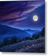 Forest On A Steep Mountain Slope Metal Print