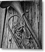 Forgotten Tuba Metal Print