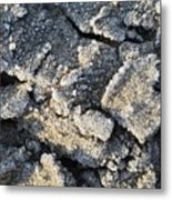Frost Crystals  Metal Print