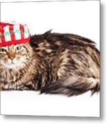 Funny Grumpy Christmas Cat Metal Print