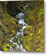 Streaming Through Rainforest Rubble Metal Print