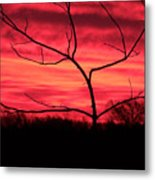 Good Evening Metal Print