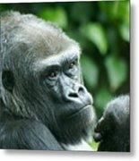 Gorilla Headshot Metal Print