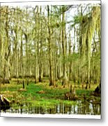 Grand Bayou Swamp  Metal Print