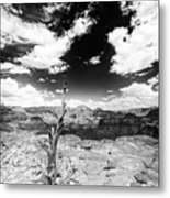Grand Canyon Landscape Metal Print