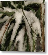 Grass In Snow 2 Metal Print