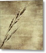 Grass Seeds Metal Print