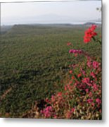 Great Rift Valley Ethiopia Metal Print
