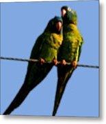Green Parrot Metal Print