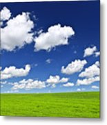 Green Rolling Hills Under Blue Sky Metal Print by Elena Elisseeva