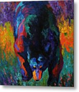 Grounded - Black Bear Metal Print