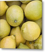 Harvested Lemons Metal Print