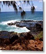 Hawaiian Snapshot Metal Print