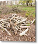 Heap Of Cut Wood Metal Print