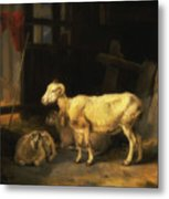 Heath Ewe And Lambs Metal Print
