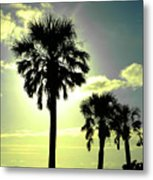 Honeymoon Island Sunset Metal Print