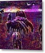 Horses Flock Coupling Ride Animals  Metal Print