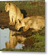 I Can See Myself Metal Print