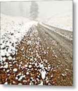 Ice Fog In Cypress Hills Provincial Park Of Saskatchewan Metal Print