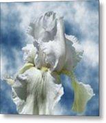 Iris In The Clouds Metal Print