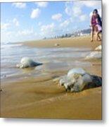Jellyfish On The Beach  Metal Print