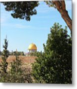 Jerusalem Trees Metal Print
