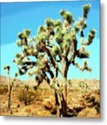 Joshua Trees Metal Print