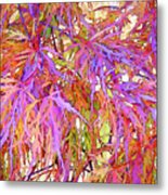 Lacy Maple Leaves Metal Print