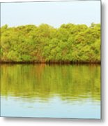 Lagoon On Santa Cruz Island In Galapagos Metal Print