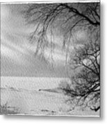 Lake Erie In Winter Metal Print