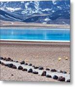 Lake Miscanti In Chile Metal Print