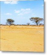 Landscape Near Laisamis, Kenya Metal Print