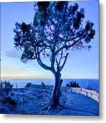 Landscapes At Grand Canyon Arizona Metal Print