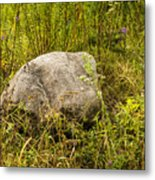 Large Rock And Purple Asters Metal Print
