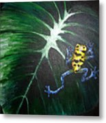 Little Frog In A Big World Metal Print
