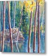 Little Mountain Beaver Pond 04 Metal Print