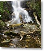 Log Hollow Falls North Carolina Metal Print