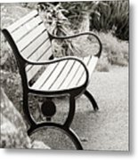 Lone Bench In The Park. Metal Print
