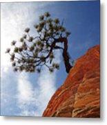 Lone Bonsai Tree In Zion Metal Print