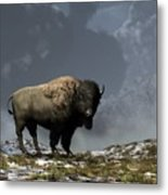 Lonely Bison Metal Print by Daniel Eskridge