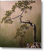 Lonesome Mountain Pine  Metal Print