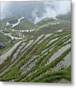 Longsheng Rice Terraces Metal Print