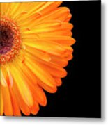 Macro Shot Of Flower Metal Print