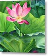 Magenta Lotus Blossom Metal Print