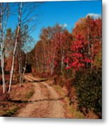 Maine October Metal Print