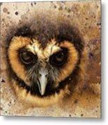 Malaysian Brown Wood Owl Metal Print